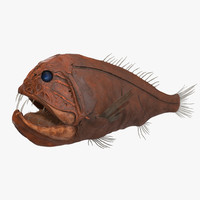 fangtooth fish 3d model