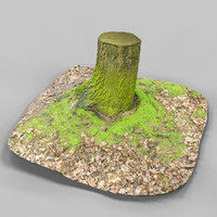 3d environment asset photoscanned model
