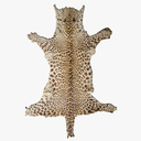 Animal Rug 3D models