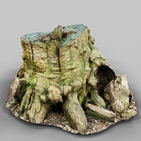 environment asset photoscanned 3d obj