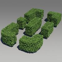 Box Hedge Pack 01