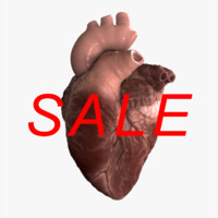 3d realistic human heart animation