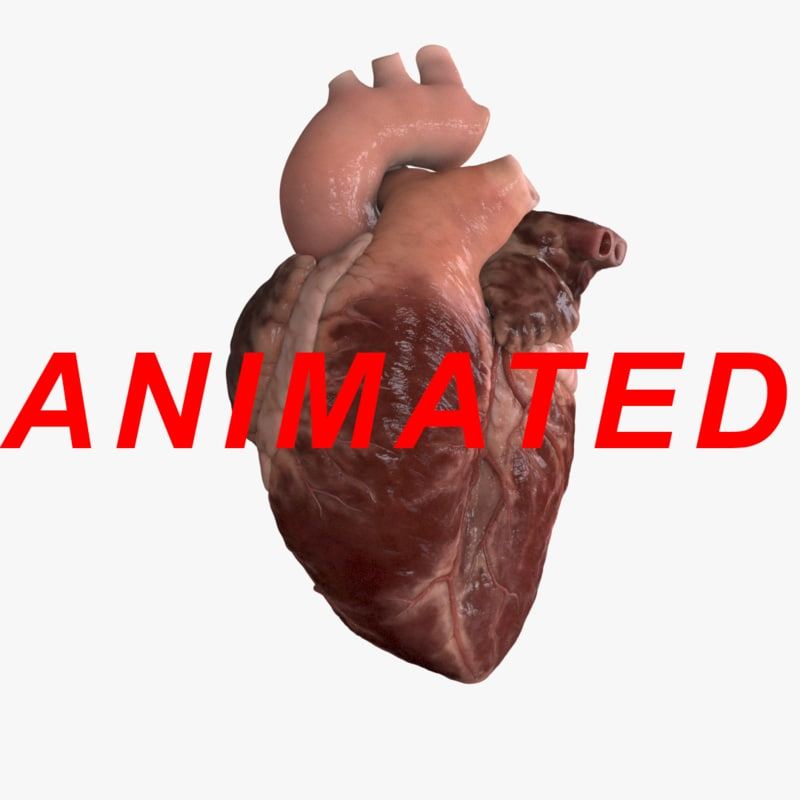 heartbeat_1_animated.png