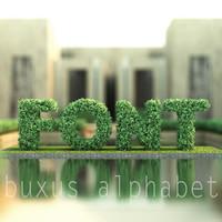 max alphabet buxus