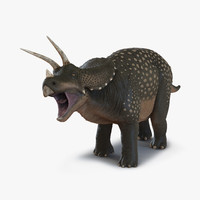 triceratops rigged 3d model