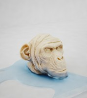 3d model of gorilla head