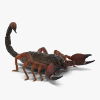 3ds scorpion
