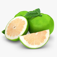 max realistic grapefruit green