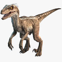 raptor dinosaur 3d model