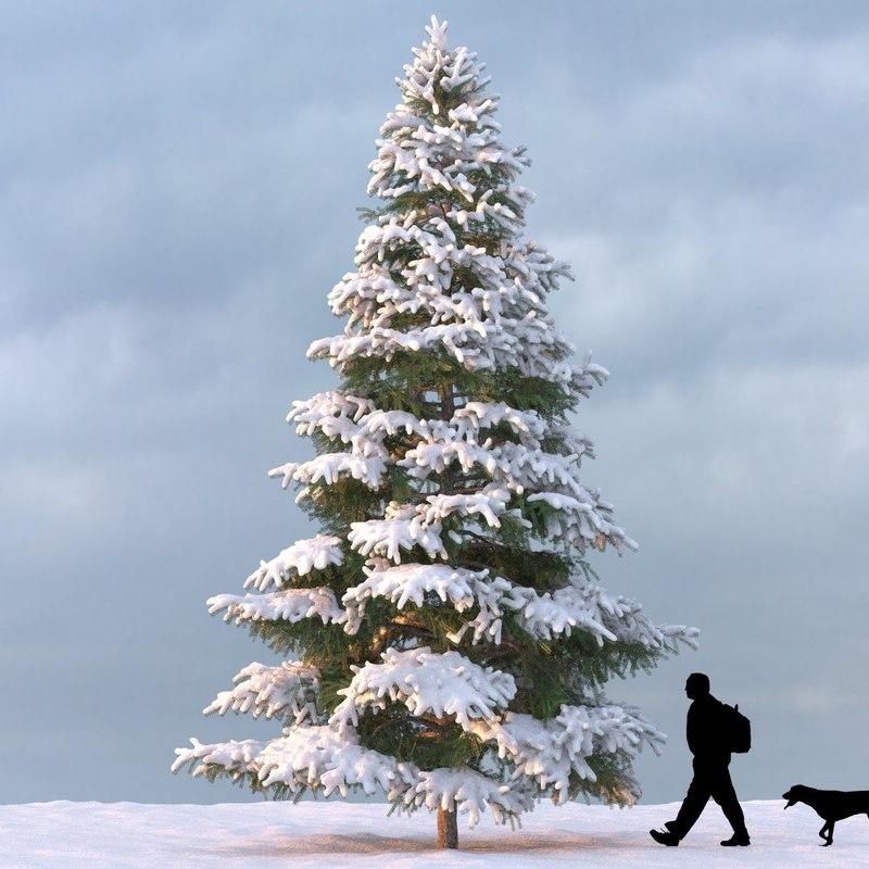 winter_tree_08_f_0000.jpg