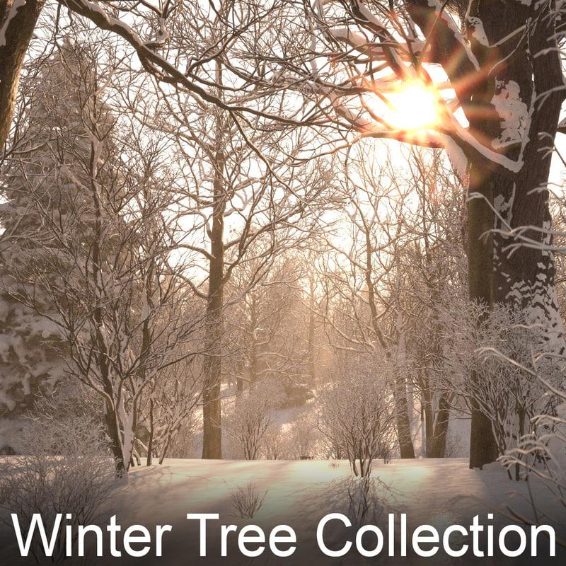 winter_tree_demo02 copy.jpg