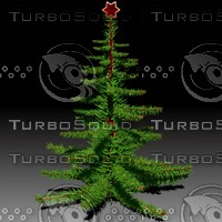 fir tree christmas 3d max