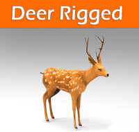 deer rigged 3d max