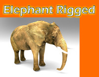 elephant rigged