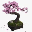 flowering tree 3D models