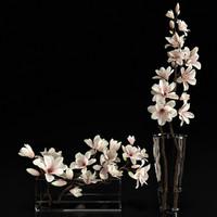 magnolia 3d model