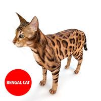 3d model bengal cat fur
