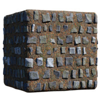 Forest Cover with Large Cobblestone
