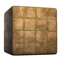 Concrete Square Tiles Overgrown