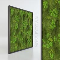 fytowall moss 3d max