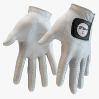 - titleist golf gloves 3d 3ds