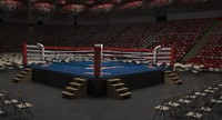 3d model boxing arena