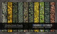 Hedge Collection - Vol1 (PBR Textures)