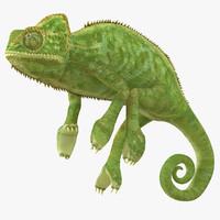 max chameleon pose 2