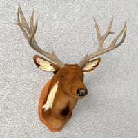 taxidermy deer 3d model