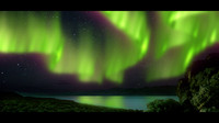 aurora effects max