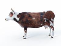 cow 3d max