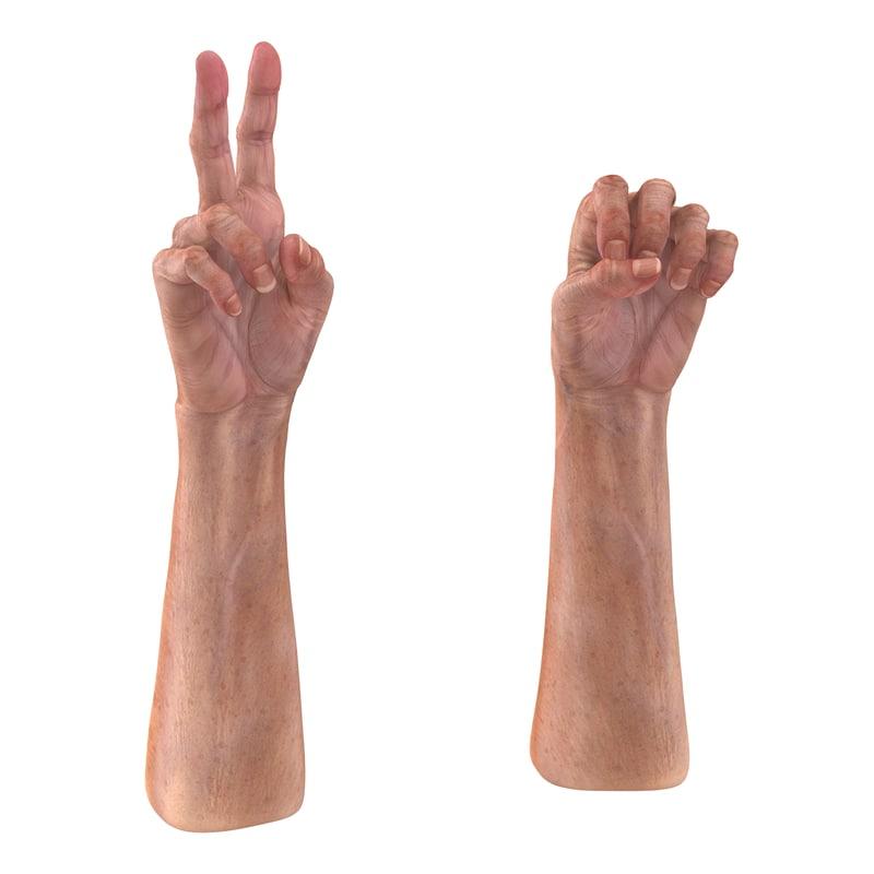 3d model of Old Man Hands Rigged 02.jpg