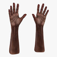 old african man hands 3d model