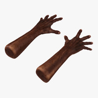3d old african man hands