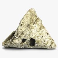 3d model fosil rapana shell