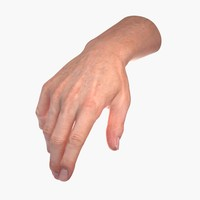 3d male human hand rigged model
