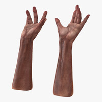 3d model old african man hands