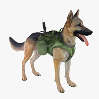 3d military dog german