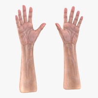 3ds old man hands 3