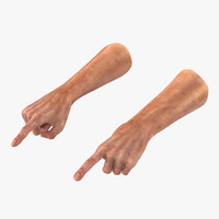 old man hands 2 3d model