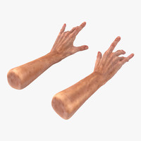 old man hands 2 3d 3ds