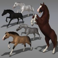 3d model modeled animations horses
