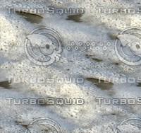 Beach foam 44