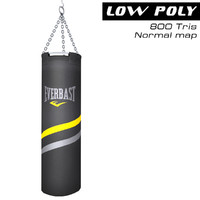 punching bag max
