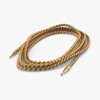 golden lasso truth coiled 3d max