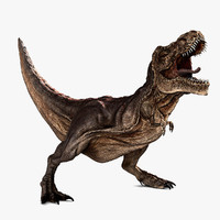tyrannosaurus rigged rex 3d model