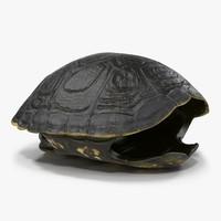 3d model turtle shell 2