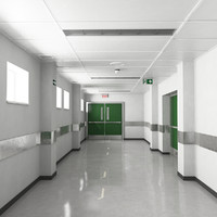 max hospital corridor