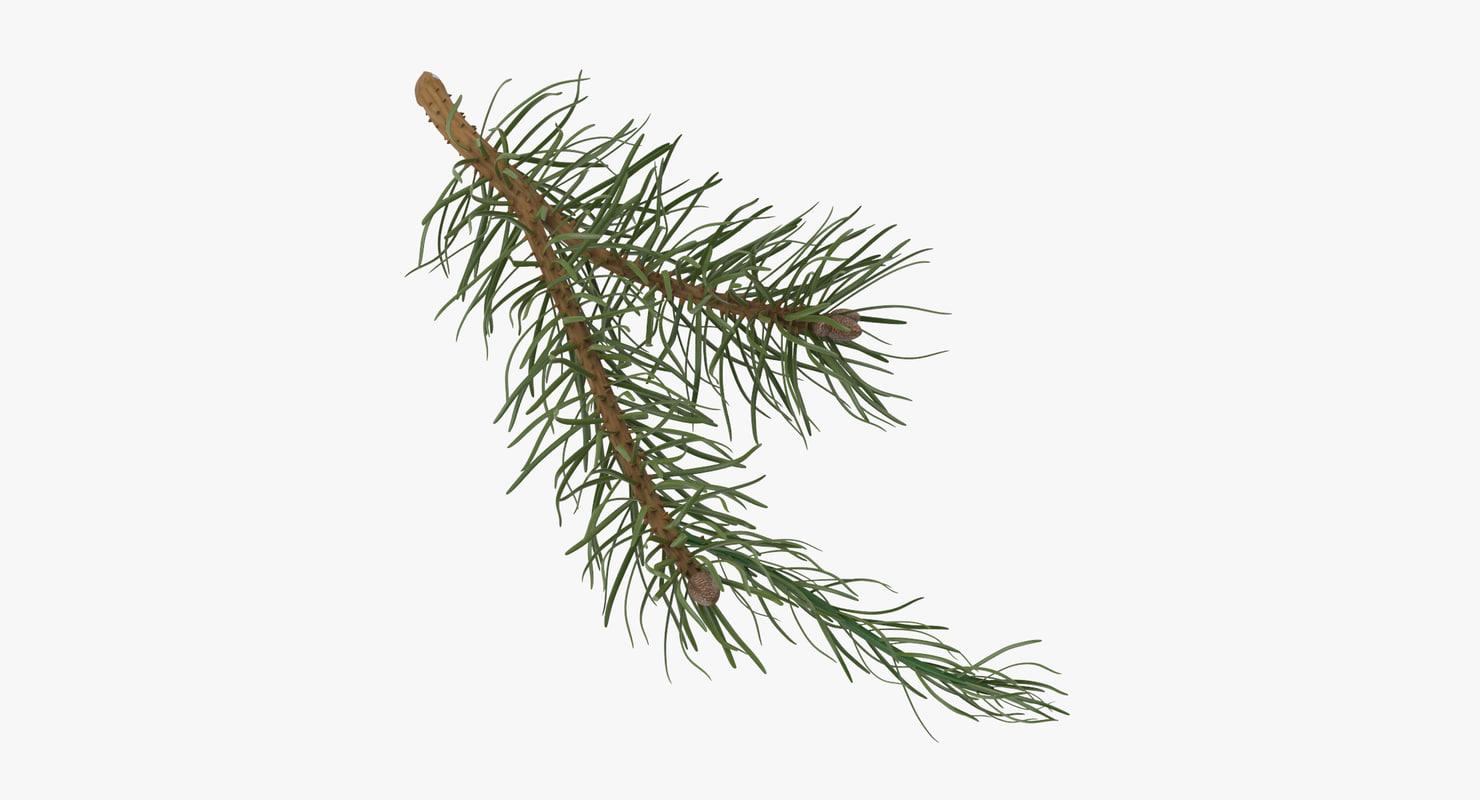 Pine_Tree_Sprig_03_001_Thumbnail_0000.jpg