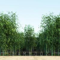 2 tree bamboo max
